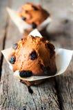 Muffin των βακκίνιων Στοκ Φωτογραφία
