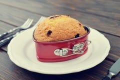 Muffin των βακκίνιων Στοκ Εικόνες