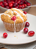 Muffin των βακκίνιων Στοκ εικόνες με δικαίωμα ελεύθερης χρήσης