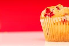 muffin των βακκίνιων Στοκ φωτογραφία με δικαίωμα ελεύθερης χρήσης