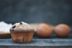 muffin stockbilder
