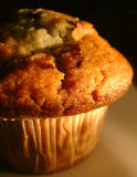 Muffin. A golden muffin, freshbaked from the oven. This is the 670000th image online Royalty Free Stock Image