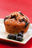 Muffin. Blueberry muffin on a square plate Royalty Free Stock Images