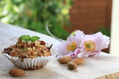 Muffin Stock Photos