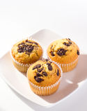 Muffin. With chocolate chip on top Royalty Free Stock Image