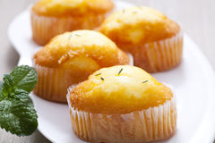 Muffin. Fresh yellow muffin with rosemary on it Stock Images