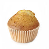 Muffin Royaltyfri Foto
