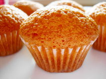 muffin Royaltyfria Bilder