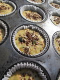 Muffin Immagine Stock
