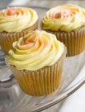 Muffin Royaltyfri Fotografi