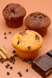 Muffin. White muffin and chocolate muffin Royalty Free Stock Images