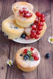 Muffin ai mirtilli Fotografia Stock Libera da Diritti