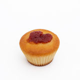 Muffin with apricot Royalty Free Stock Images