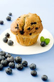 Muffin with berries Stock Images
