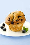 Muffin with berries Royalty Free Stock Photography