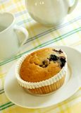 Muffin with berries on plate and cup Royalty Free Stock Photos