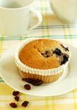muffin with berries on plate and cup Royalty Free Stock Images