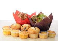 Muffin. Big and some mini muffins on table stock photo