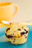 Muffin and blue plate Royalty Free Stock Image