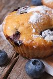 Muffin with blueberries and powdered sugar macro Stock Photos