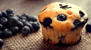 Muffin with blueberries on a wooden table. fresh berries and swe. Et pastries on the board stock image