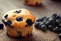 Muffin with blueberries on a wooden table. fresh berries and swe Stock Photos