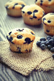 Muffin with blueberries on a wooden table. fresh berries and swe Stock Images