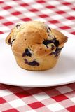 muffin blueberry Fotografia Royalty Free
