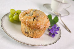 muffin blueberry obrazy royalty free