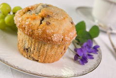 muffin blueberry zdjęcia stock