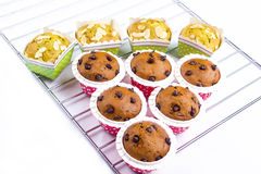 Muffin cake breakfast Royalty Free Stock Photography