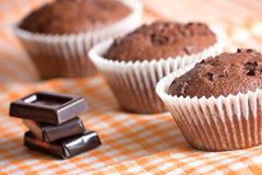 Muffin cake chocolate dessert Stock Photos