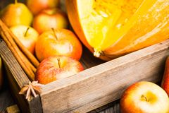 Muffin casalinghi del atutumn con la zucca, le mele e le spezie sui precedenti rustici fotografia stock libera da diritti