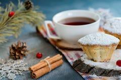 Muffin casalinghi freschi del mirtillo rosso in zucchero a velo con i rami ed il tè dell'abete Fotografia Stock Libera da Diritti