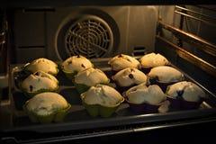 Muffin che cucinano nel forno Immagini Stock