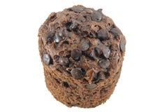 Muffin Choc arkivbild