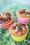 Muffin with choc-chip Stock Images