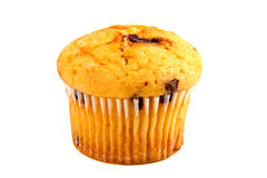 Muffin with chocolate Royalty Free Stock Photos