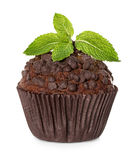 Muffin, chocolate cake with mint isolated on white Royalty Free Stock Image