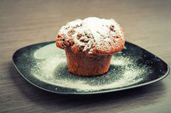 Muffin chocolate cake with white powdered sugar Royalty Free Stock Image