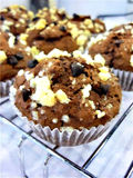 Muffin  chocolate chip. A muffin  chocolate chip  on a small white plate Stock Photos
