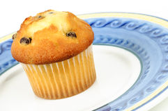 Muffin with chocolate chips Royalty Free Stock Images