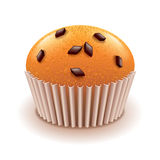 Muffin with chocolate crumbs isolated on white vector stock illustration