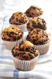 Muffin chocolate group of pices cupcakes Royalty Free Stock Photography