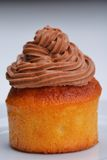 Muffin chocolate Stock Photography