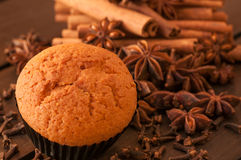 Muffin close up with spices background Stock Images