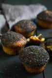 Muffin con i semi di papavero Immagine Stock Libera da Diritti