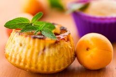 Muffin con le albicocche Fotografie Stock Libere da Diritti