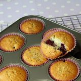 Muffin cooked in tray Royalty Free Stock Image