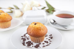 Muffin with a cup of tea Royalty Free Stock Photo